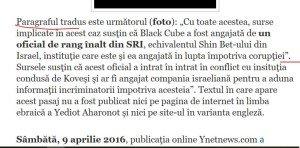 paragraf tradus
